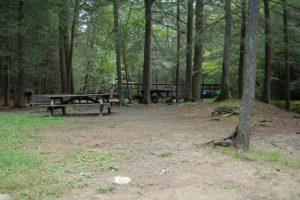 Cold Spring Grove Picnic area