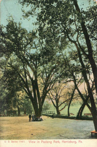 A View in Paxtang Park