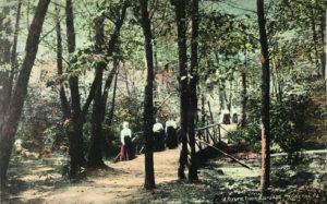 Mt. Gretna rustic path